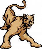 Cougar Mascot Body Vector Illustration