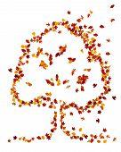 Autumn leaves vorm een vorm van de boom