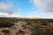 Clark Mountains with snow on the California - Nevada desert border. Mohave Desert and Death Valley M poster