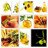 Collage de aceitunas