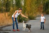 Family Time. A Pregnant Mother And Son Play With A Pet Dog. Pedigree Dog Yakut Husky. poster