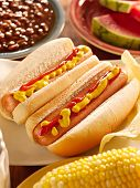 picture of bbq food  - hot dog meal with onion - JPG