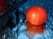Wet Tomato In The Drops On The Mirror. Fresh Tomato On A Blue Wet Background. poster