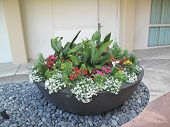 Large flower planter