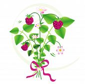Bouquet of wild strawberries