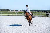 Horse Riding . Young Girl Riding A Horse . Equestrian Sport In Details. Sport Horse And Rider On Gal poster