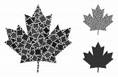 Maple Leaf Composition Of Ragged Items In Variable Sizes And Color Tints, Based On Maple Leaf Icon.  poster