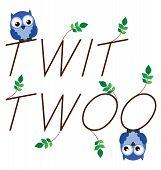 Twit Twoo
