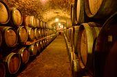 Wine Barrels In Wine-vaults In Order. Wine Bottle And Barrels In Winery Cellar poster
