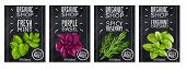 Spices Herbs Cards. Four Vertical Banners With A Realistic Fresh Herbs, Isolated Objects, Popular Cu poster