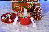 The Hand-made Eatable Gingerbread House, Marshmallow Snowman  In Mag,  New Year Tree, Snow Decoratio poster