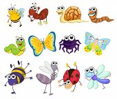 stock photo of mayfly  - Illustration of a group of bugs - JPG