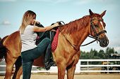 Girl Rider Climbs A Horse. Leather Boot In Stirrup. Horseback Riding poster