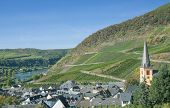 Village of Senheim,Mosel River,Germany