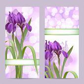 Conjunto de banderas de la primavera con flores de Iris morado