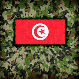 picture of ami  - Amy camouflage uniform with flag on it Tunisia - JPG
