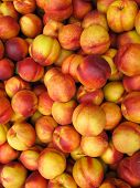 Lush autumn peaches from orchard
