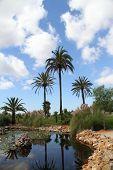 Bontanicactus,ses Selines, Mallorca, Spain