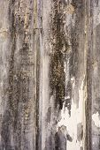 Old Painted Wood Grunge Background Overlay
