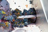 stock photo of crusher  - corkscrew crusher destemmer in winemaking with cabernet sauvignon grapes - JPG