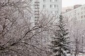 Moscow region. Winter day. Blizzard in the city