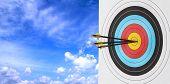 Archery Target With Arrow