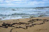 Stormy Seaweed Beach