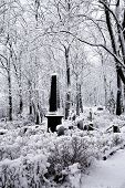stock photo of hearse  - Cemetery covered by snow in Riga - JPG