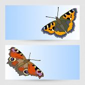 Vector Templates Graphic Designs With Butterfly.