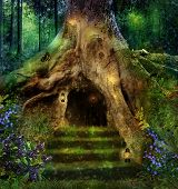 picture of storybook  - view of a little magic house in a big tree in the middle of an enchanted forest - JPG