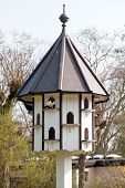 Multystoried Birdhouse