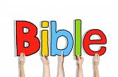 foto of bible story  - Diverse Hands Holding the Word Bible - JPG