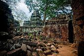 Ancient ruin of the Ta Phrom temple, Angkor Wat Cambodia