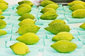 Jewish autumn holiday of Sukkot. Ritual fruit - citrus on the traditional pre-holiday bazaar in Jerusalem