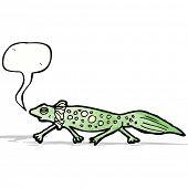 cartoon salamander