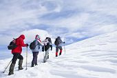 Alpine Expedition