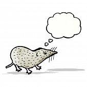 stock photo of shrew  - cartoon shrew - JPG