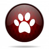 foto of webbed feet white  - foot red glossy web icon on white background - JPG