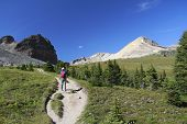 Hiking On An Alpine Trail - Jasper National Park, Canada