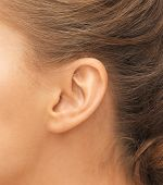 stock photo of piercings  - hearing - JPG