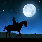 Silhouette of a rider on a horse in night .