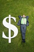 Asian businessman in grass next to dollar sign