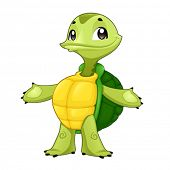 Baby turtle. Funny cartoon and vector isolated character
