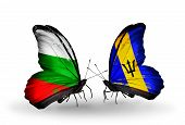 Two Butterflies With Flags On Wings As Symbol Of Relations Bulgaria And Barbados