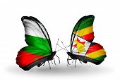 Two Butterflies With Flags On Wings As Symbol Of Relations Bulgaria And Zimbabwe
