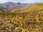 Scenic panorama of the mountains of South Africa