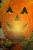 Arrangement For Halloween On Sunset Light