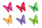 Set of Colorful Butterflies Isolated for Spring