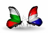 Two Butterflies With Flags On Wings As Symbol Of Relations Bulgaria And Holland