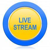 live stream blue yellow icon